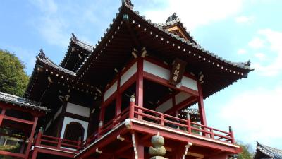 f:id:kabutoyama-tigers:20121030130502j:image