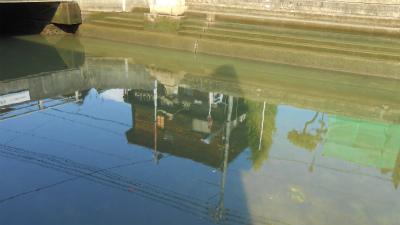 f:id:kabutoyama-tigers:20121030131303j:image