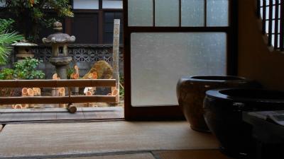 f:id:kabutoyama-tigers:20121030183941j:image