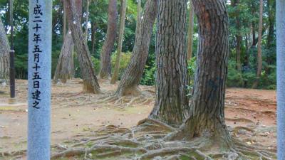 f:id:kabutoyama-tigers:20121103090412j:image