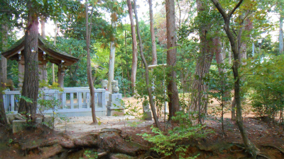 f:id:kabutoyama-tigers:20121103091631j:image