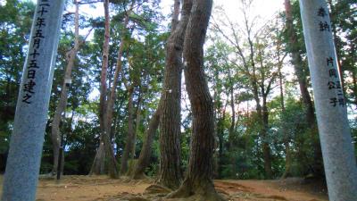 f:id:kabutoyama-tigers:20121103092603j:image