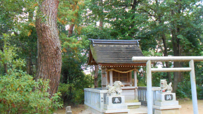 f:id:kabutoyama-tigers:20121103094147j:image