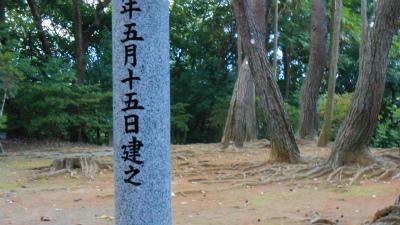 f:id:kabutoyama-tigers:20121103095043j:image