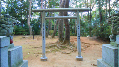 f:id:kabutoyama-tigers:20121103095334j:image