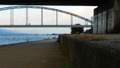 f:id:kabutoyama-tigers:20121103103650j:image
