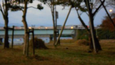 f:id:kabutoyama-tigers:20121105191938j:image