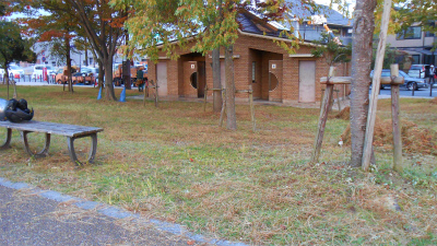 f:id:kabutoyama-tigers:20121105204905j:image