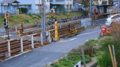 f:id:kabutoyama-tigers:20121111140450j:image