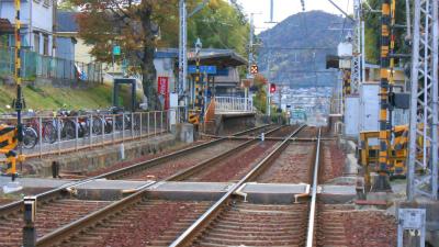 f:id:kabutoyama-tigers:20121111142459j:image