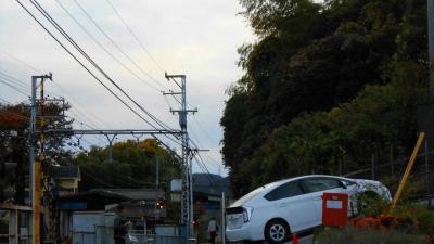 f:id:kabutoyama-tigers:20121111144053j:image