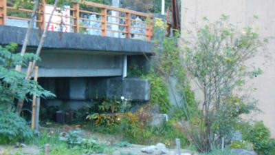 f:id:kabutoyama-tigers:20121111145045j:image