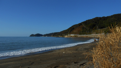 f:id:kabutoyama-tigers:20121118022243j:image