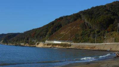 f:id:kabutoyama-tigers:20121118022835j:image