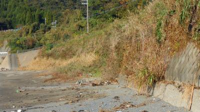 f:id:kabutoyama-tigers:20121118041851j:image
