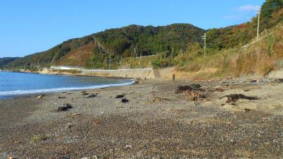 f:id:kabutoyama-tigers:20121118043542j:image