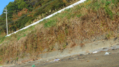 f:id:kabutoyama-tigers:20121118050447j:image