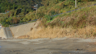f:id:kabutoyama-tigers:20121118050903j:image