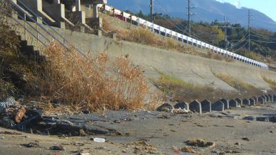 f:id:kabutoyama-tigers:20121118052243j:image