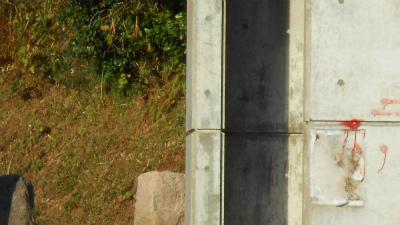 f:id:kabutoyama-tigers:20121118053417j:image