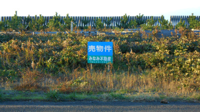 f:id:kabutoyama-tigers:20121118150048j:image