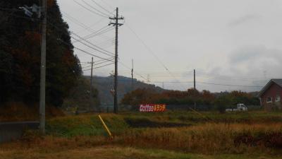 f:id:kabutoyama-tigers:20121125072050j:image