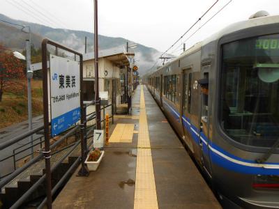 f:id:kabutoyama-tigers:20121125092705j:image