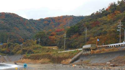 f:id:kabutoyama-tigers:20121125105810j:image