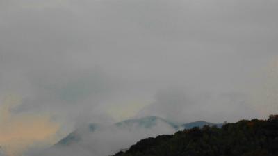 f:id:kabutoyama-tigers:20121125114938j:image