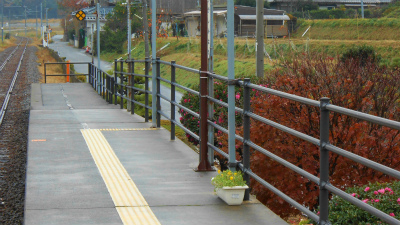 f:id:kabutoyama-tigers:20121125125302j:image