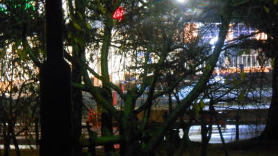f:id:kabutoyama-tigers:20121125133447j:image