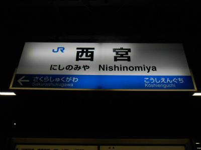 f:id:kabutoyama-tigers:20121125211252j:image