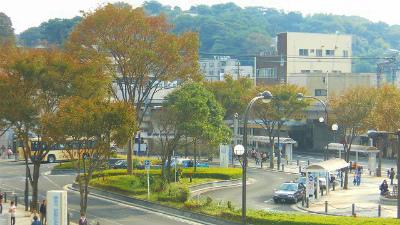 f:id:kabutoyama-tigers:20121127120533j:image