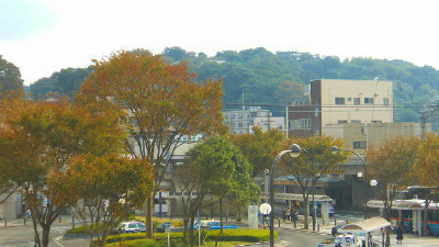 f:id:kabutoyama-tigers:20121127120649j:image