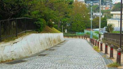 f:id:kabutoyama-tigers:20121127123434j:image