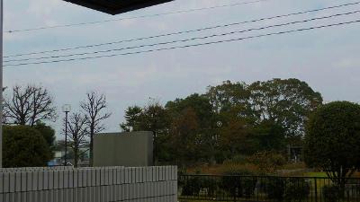 f:id:kabutoyama-tigers:20121127125741j:image