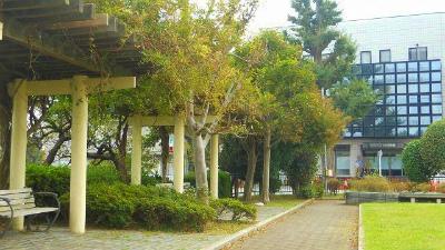 f:id:kabutoyama-tigers:20121127132955j:image