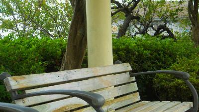 f:id:kabutoyama-tigers:20121127133256j:image