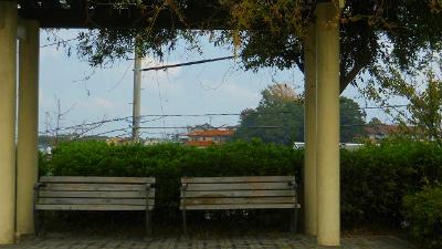 f:id:kabutoyama-tigers:20121127151716j:image