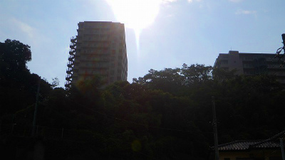 f:id:kabutoyama-tigers:20121128010953j:image