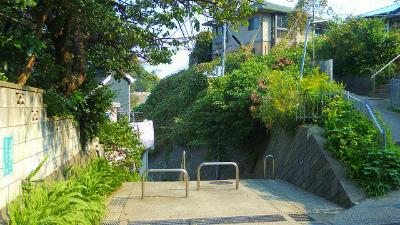 f:id:kabutoyama-tigers:20121128013659j:image