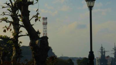 f:id:kabutoyama-tigers:20121128020336j:image