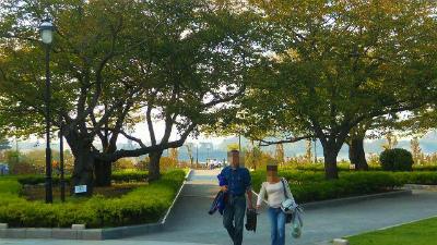 f:id:kabutoyama-tigers:20121128023907j:image
