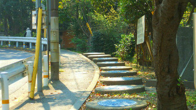 f:id:kabutoyama-tigers:20121128043635j:image