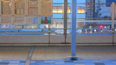 f:id:kabutoyama-tigers:20121202115436j:image