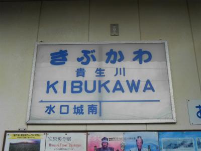 f:id:kabutoyama-tigers:20121208064811j:image