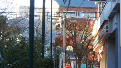 f:id:kabutoyama-tigers:20121210180326j:image