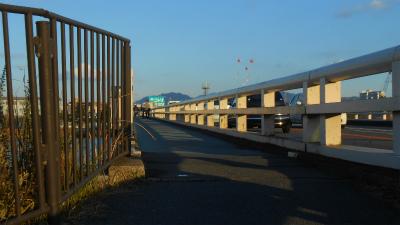 f:id:kabutoyama-tigers:20121216093338j:image