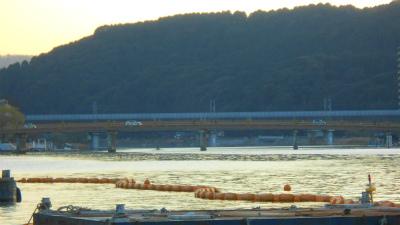 f:id:kabutoyama-tigers:20121216150033j:image
