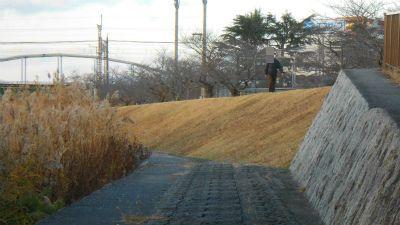 f:id:kabutoyama-tigers:20121216154139j:image